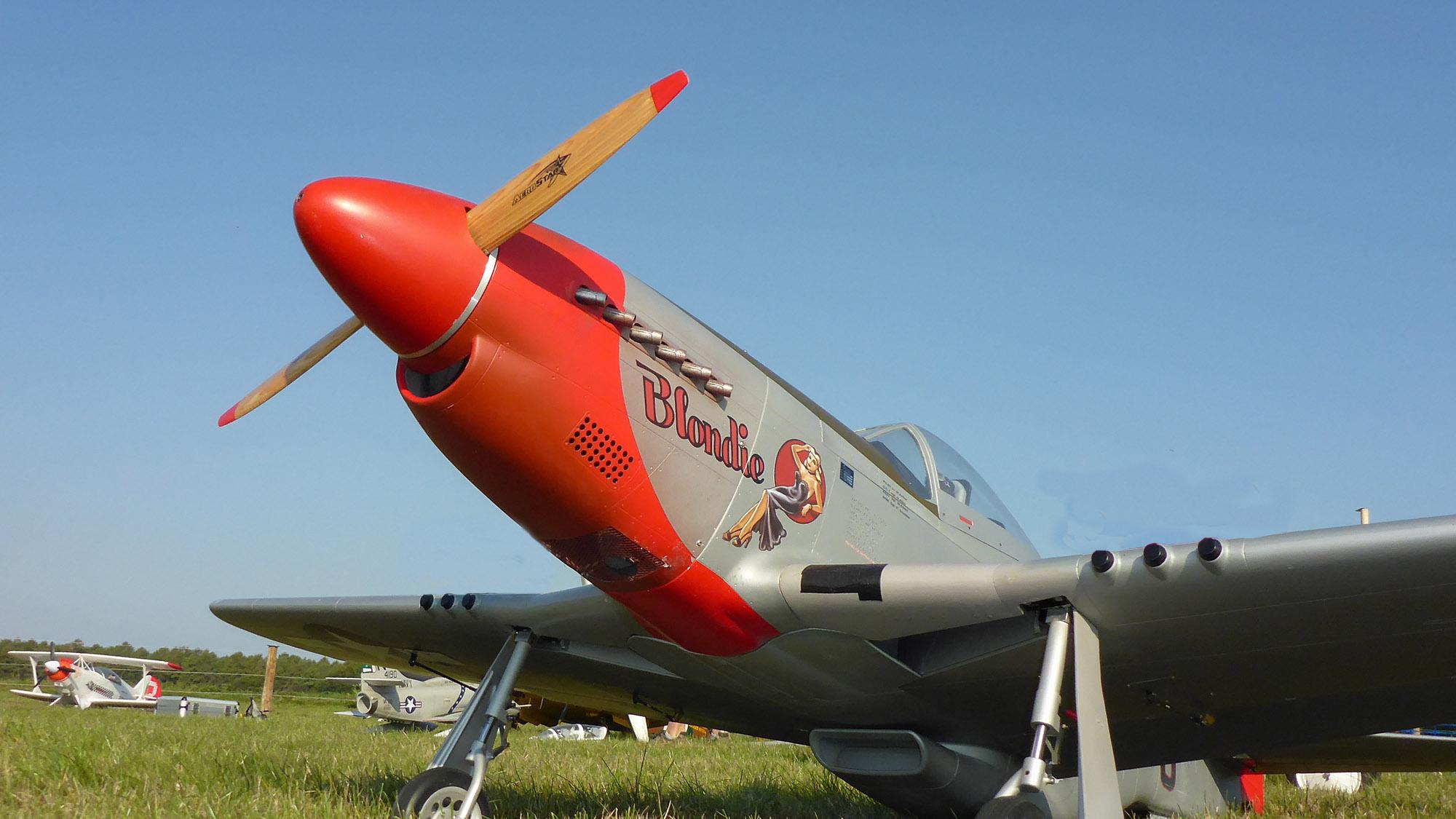 15- Mustang closeup.jpg