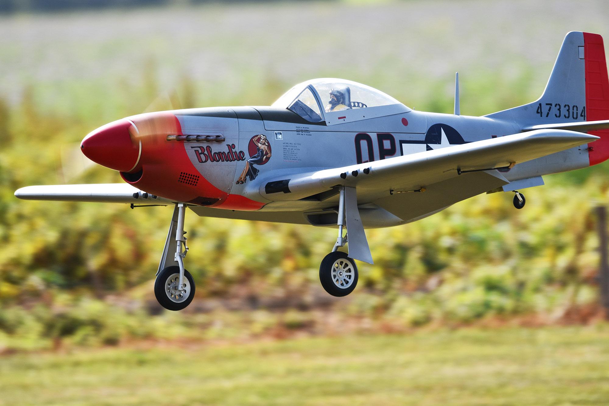 3-Mustang Bart.jpg